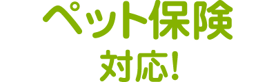 新潟 エルム